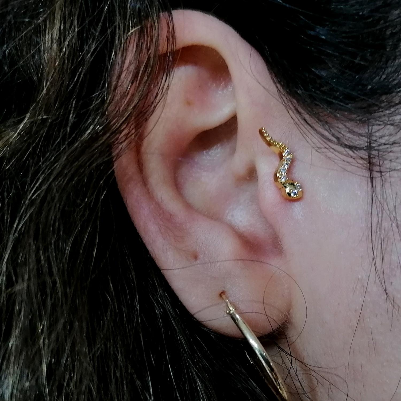 kıkırdak,helix,piercing,delimi