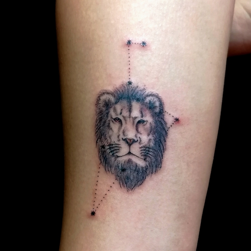 aslan,dövmeleri,lion,tattoos