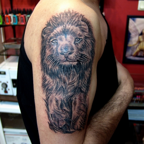 aslan,dövmesi,lion,tattoo