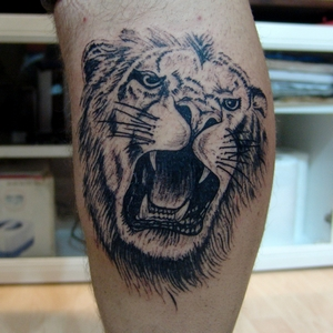 aslan,dovmeleri,lion,tattoo