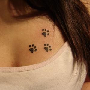 kedi,patisi,dövmeleri