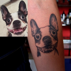 boston,terrier,tattoo